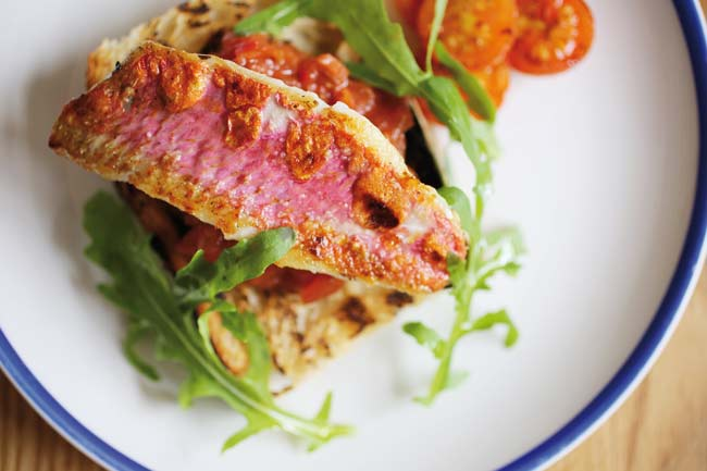 Grilled red mullet