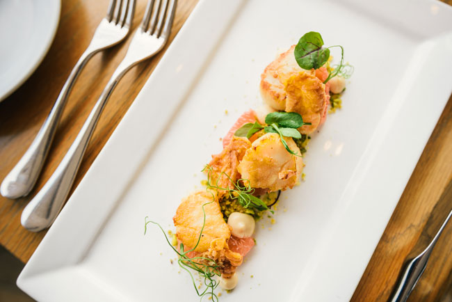pan-seared scallops with grapefruit and crispy chicken skin
