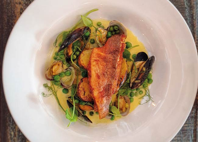 Red gurnard with clams and mussels