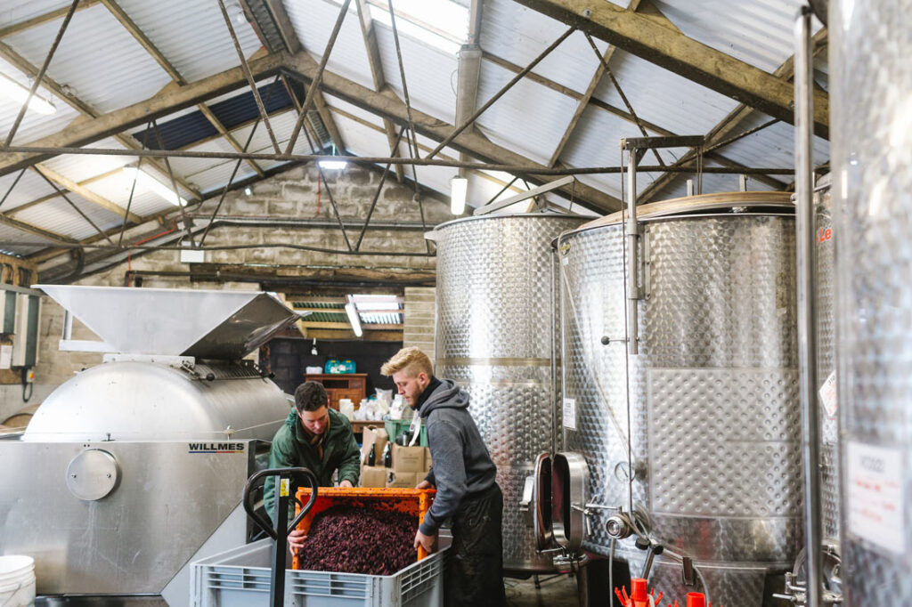 South West wineries Knightor
